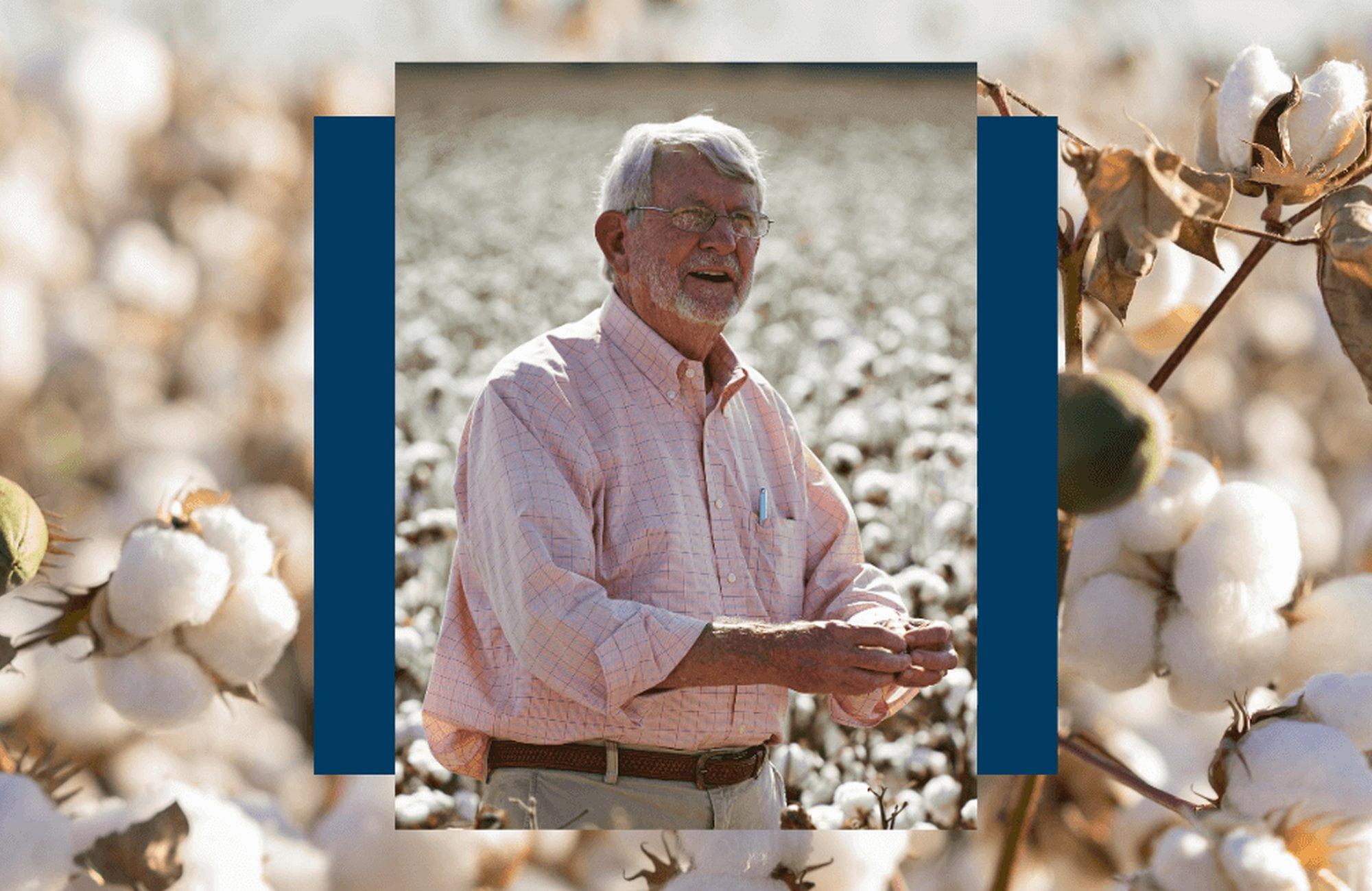 棉花和水的有前途的道路:世界水日